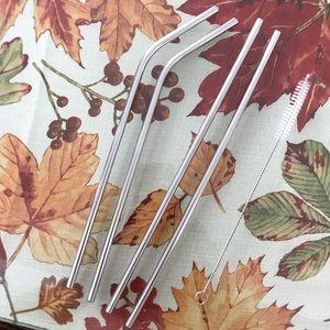 Reusable Silver Metal Straws